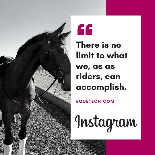 8 TIPS TO HELP YOU AND YOUR HORSE KEEP A POSITIVE MINDSET