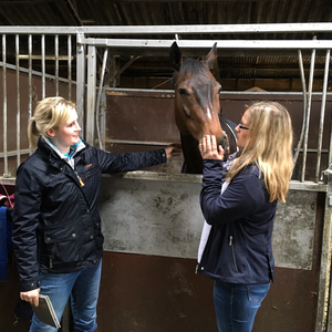Equetech Welcomes Helen Newbold to Our Sponsored Rider Family