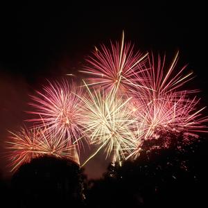 Fireworks, Livestock and Horses